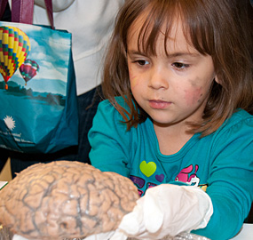 child-holding-brain