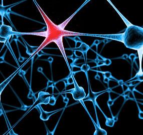 stroke-neurons