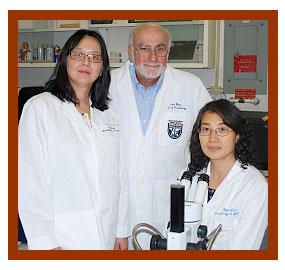 UTHealth neuroscientists Yili Zhang, Ph.D., John Byrne, Ph.D., and Rong-Yu Liu, Ph.D.