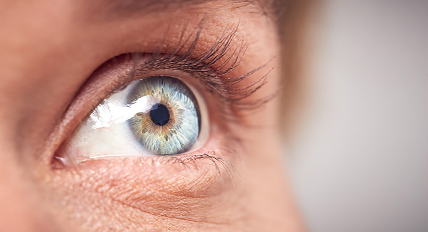 Researchers have identified key components of electrical connections between light receptors in the eye and the impact of these connections on the early steps of visual signal processing. (Photo Credit: Getty Images)